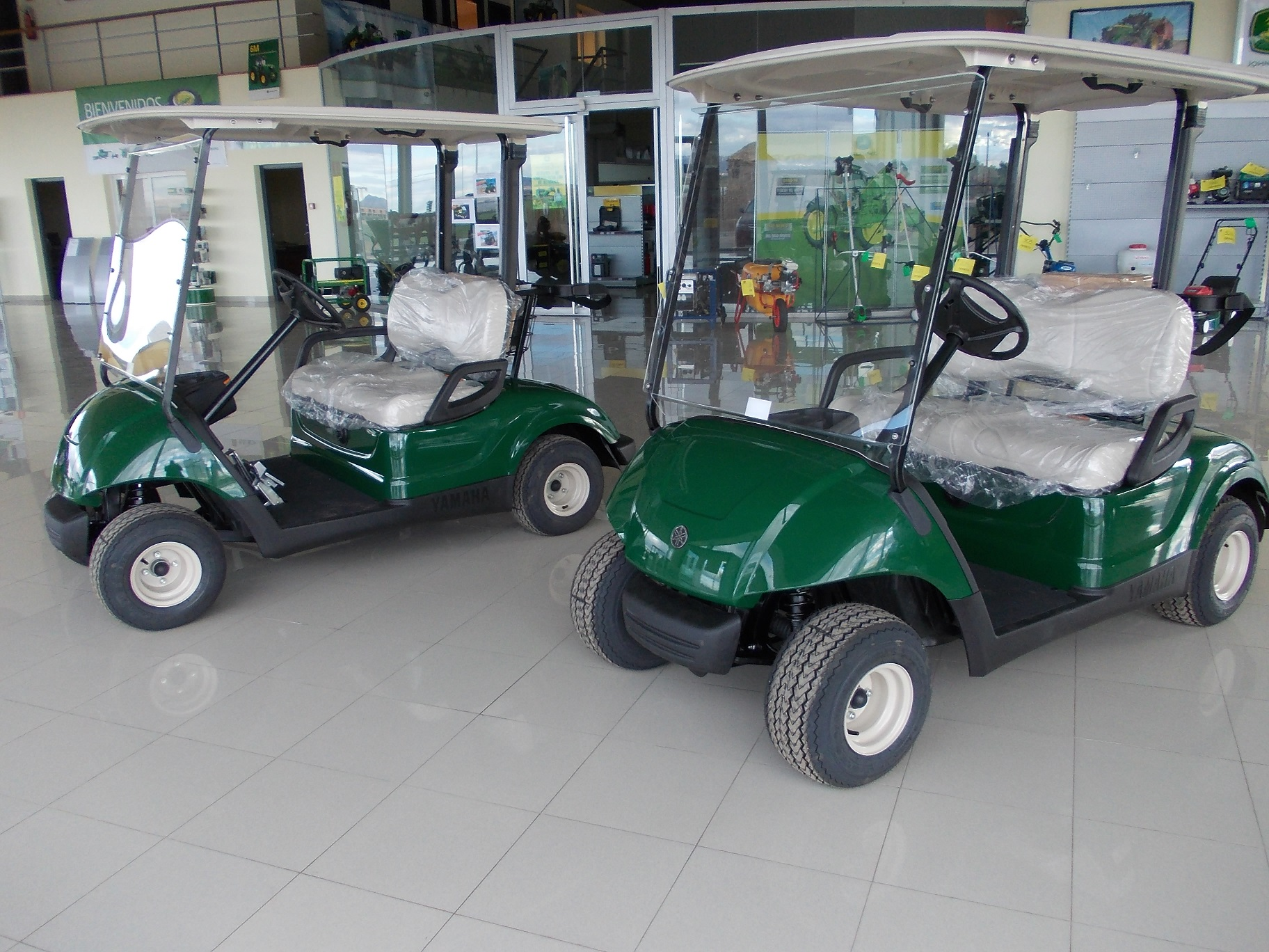 BUGGIES DE GOLF